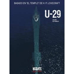 U-29 (2007)