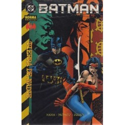 BATMAN: TIERRA DE NADIE Nº 17