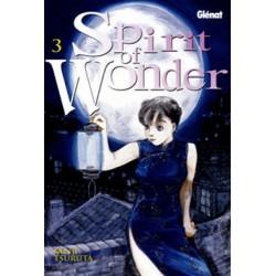 SPIRIT OF WONDER Nº 3