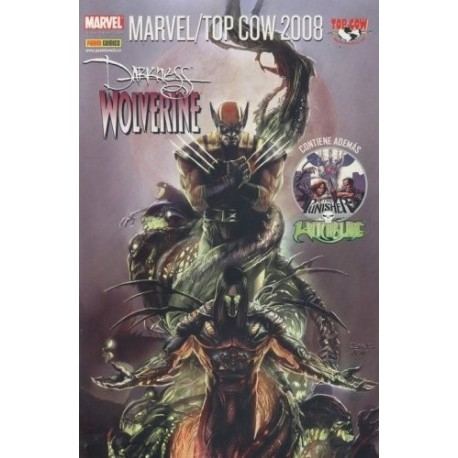 MARVEL / TOP COW 2008 Nº 1 THE PUNISHER-WITCHBLADE