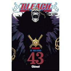 BLEACH Nº 43