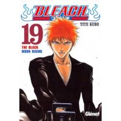 BLEACH Nº 19