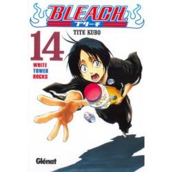 BLEACH Nº 14