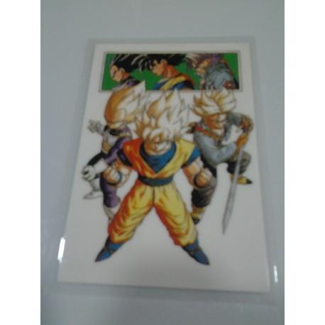 DRAGON BALL RAMI CARD Nº 49