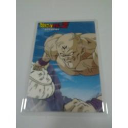 DRAGON BALL RAMI CARD Nº 79