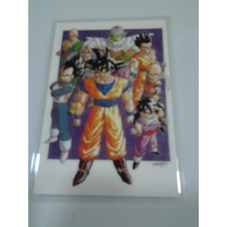 DRAGON BALL RAMI CARD Nº 48