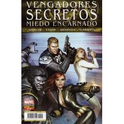 VENGADORES SECRETOS Nº 13