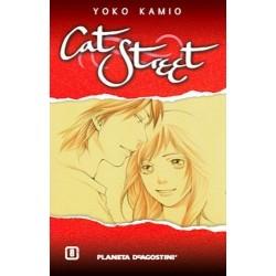 CAT STREET 08