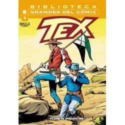 TEX 04