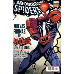 SPIDERMAN VOL.2, 29