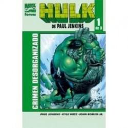 HULK DE PAUL JENKINS 01