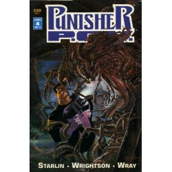 PUNISHER: P.O.V. 4