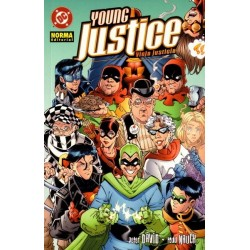YOUNG JUSTICE: VIEJA JUSTICIA