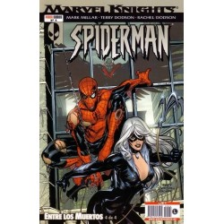 MARVEL KNIGHTS: SPIDERMAN Nº 4