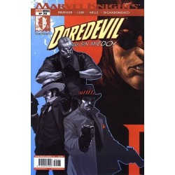 MARVEL KNIGHTS: DAREDEVIL Nº 28