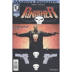 MARVEL KNIGHTS: PUNISHER VOL.2 Nº 20