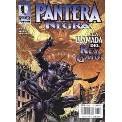 MARVEL KNIGHTS: PANTERA NEGRA Nº 13